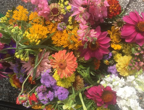 Summer Bouquets are here!